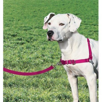 Easy Walk - Easy Walk Harness Köpek Göğüs Tasması Pembe- Medium ( 51 - 71 cm )