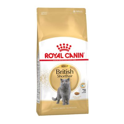 Royal Canin - Royal Canin British Shorthair Adult Kedi Maması 4 kg